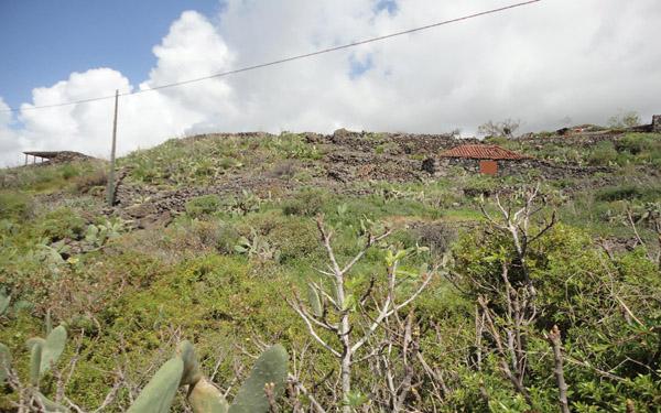 Bauland 1825 La Palma - 1