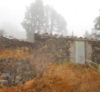 Bodega 1946 La Palma