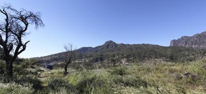 Строительный участок для туризма 1937 La Palma