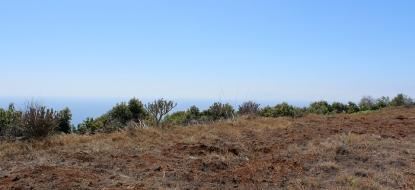 Terreno edificable 899 La Palma