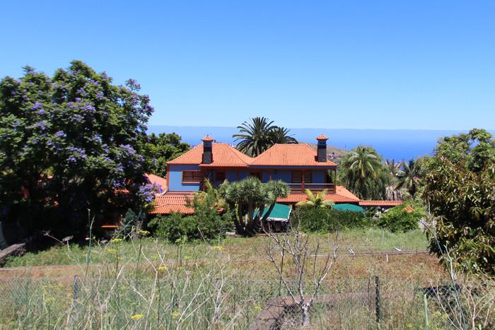 Restaurante 636 La Palma - 1