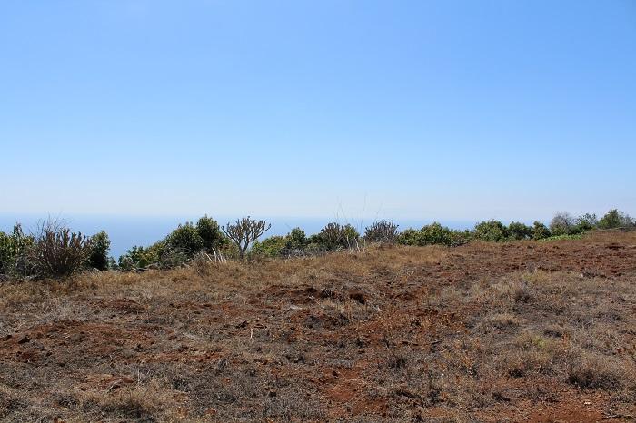 Bauland 899 La Palma - 1