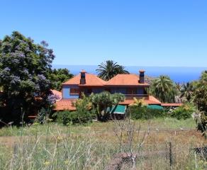 Restaurant 636 La Palma