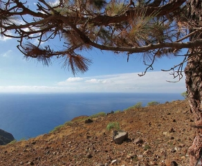Building plot incl. license 729 La Palma