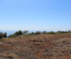 Bauland 899 La Palma