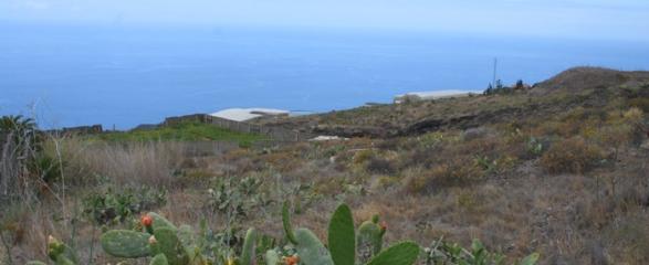 Bauland 892 La Palma