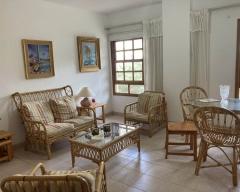 Apartment 1555