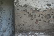 Casa urbana 1345 La Palma - 12