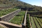 Загородный дом 1357 La Palma - 6