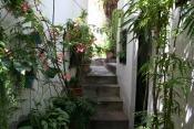 Casa urbana 1395 La Palma - 11