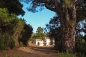 Загородный дом 2420 La Palma - 3