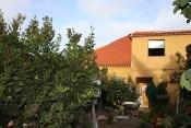 Загородный дом 2422 La Palma - 4