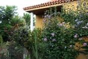 Загородный дом 2422 La Palma - 6