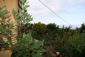 Загородный дом 2422 La Palma - 38