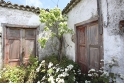 Casa 2439 La Palma - 3