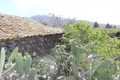 Casa 2439 La Palma - 13