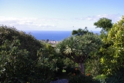 Casa 3406 La Palma - 9