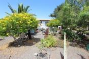 Casa 3413 La Palma - 4
