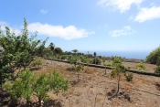 Casa 3413 La Palma - 42