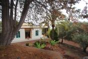 Landhaus 3420 La Palma - 44