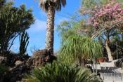 Casa 3437 La Palma - 34