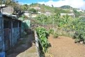 Landhaus 3450 La Palma - 22