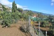 Landhaus 3450 La Palma - 27