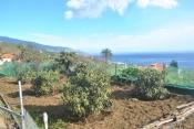 Landhaus 3450 La Palma - 28