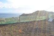 Landhaus 3450 La Palma - 29
