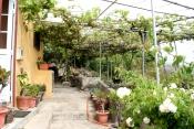 Casa urbana 389 La Palma - 2