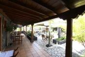 Restaurante 636 La Palma - 13