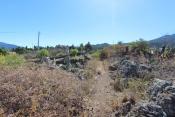 Grundstück inkl. Neubau 727 La Palma - 20