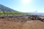 Building plot incl. license 730 La Palma - 8