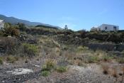 Участок под застройку 862 La Palma - 3